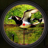 Duck Hunting 2019 – Real Wild Adventure Shooting