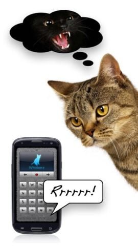 Human-to-Cat – Play with your cat!